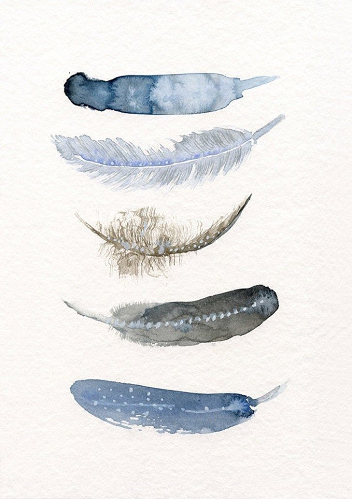 Annemette Klit_feather_watercolour_print